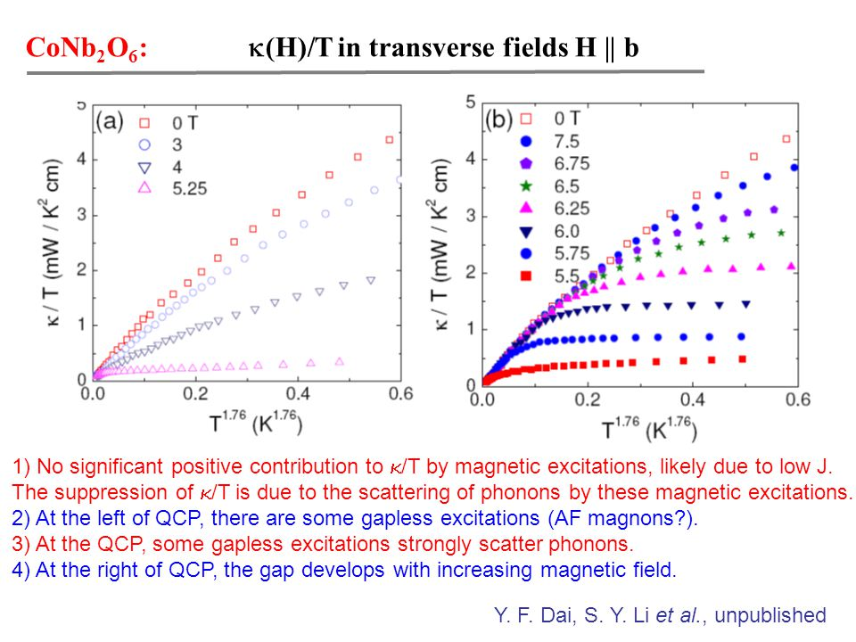CoNb 2 O 6 :  (H)/T in transverse fields H || b 1) No significant positive contribution to  /T by magnetic excitations, likely due to low J.