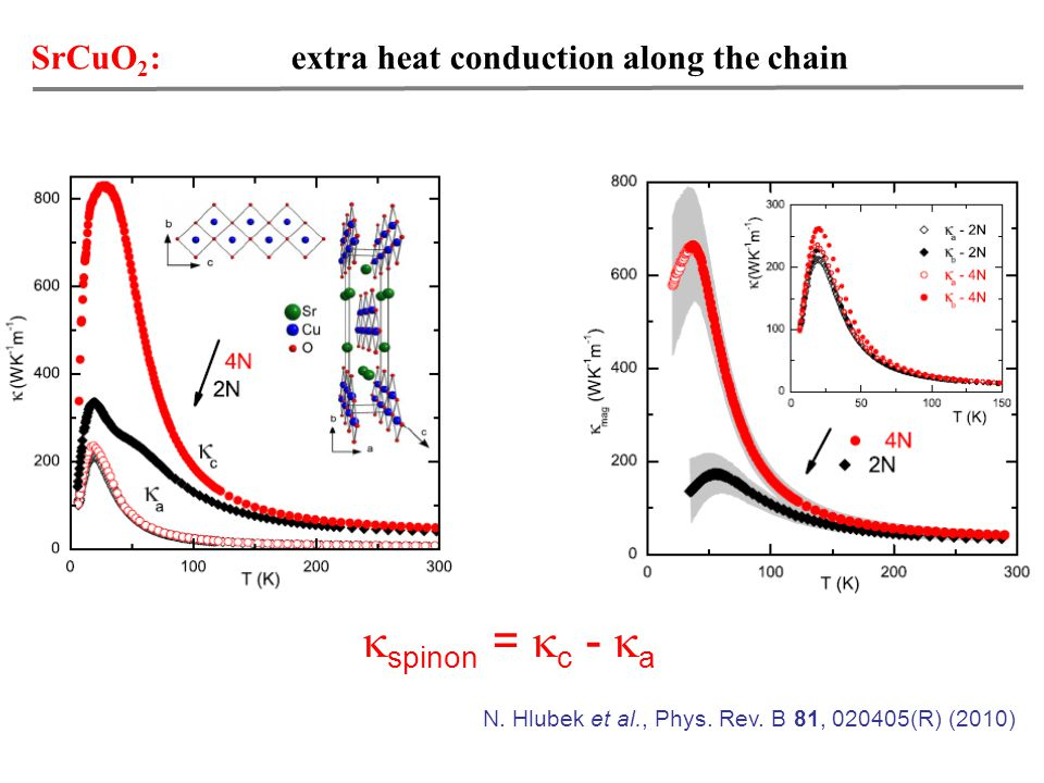 SrCuO 2 : extra heat conduction along the chain N.