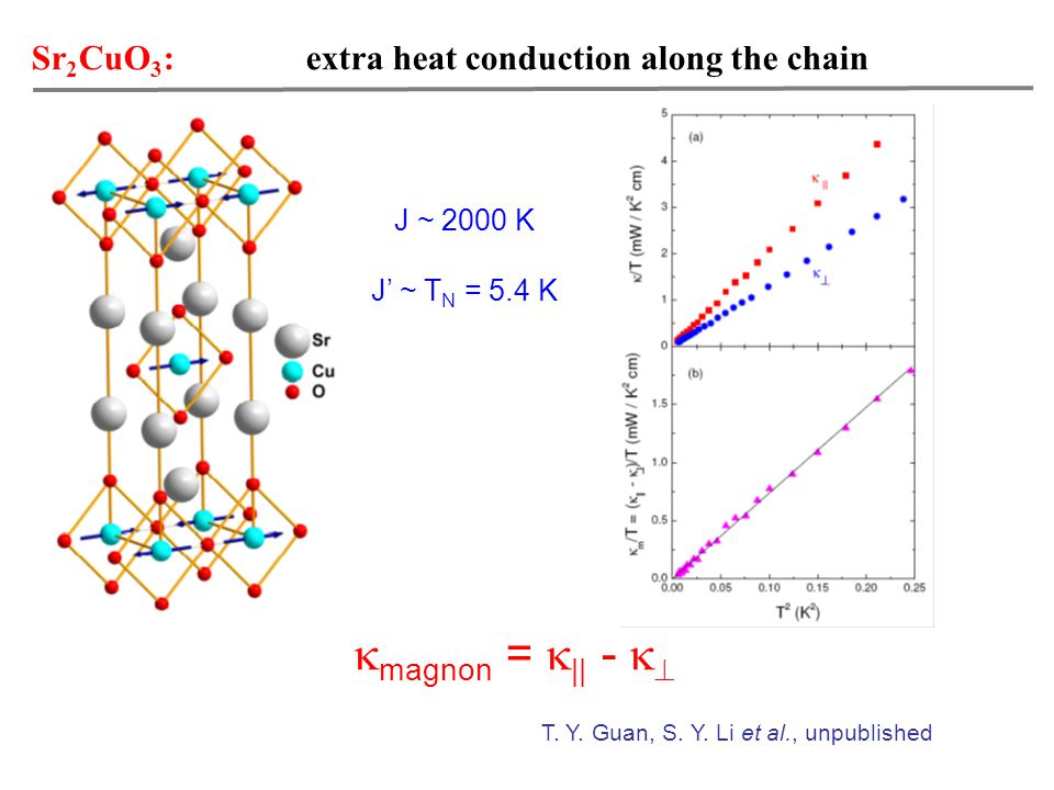 Sr 2 CuO 3 : extra heat conduction along the chain T.