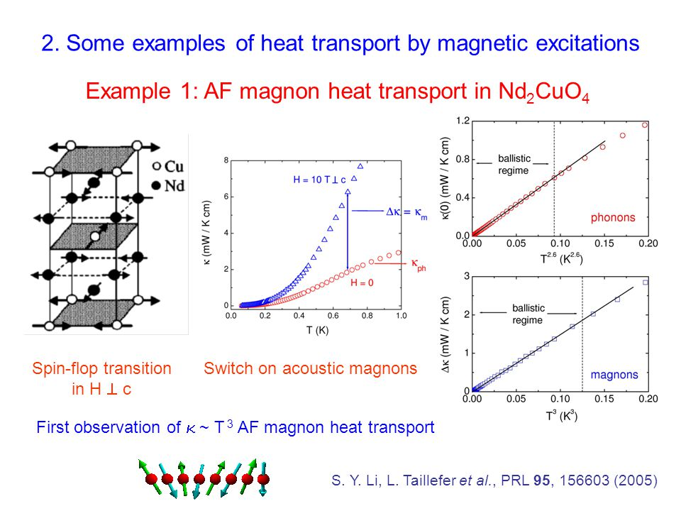 Example 1: AF magnon heat transport in Nd 2 CuO 4 S.