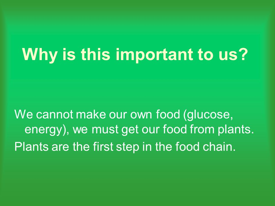 We cannot make our own food (glucose, energy), we must get our food from plants.