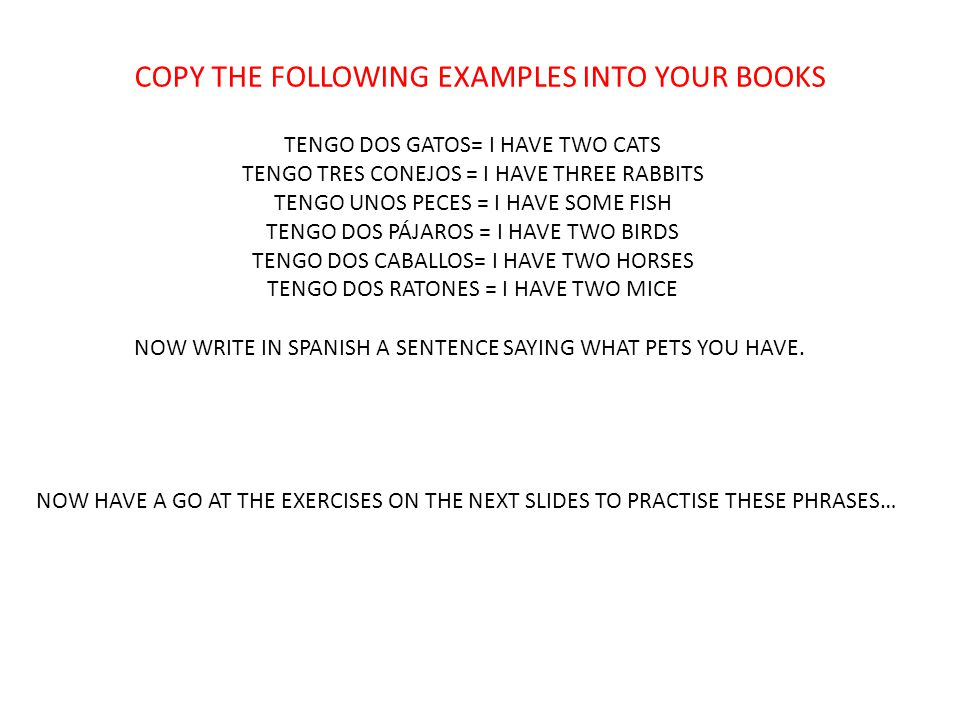COPY THE FOLLOWING EXAMPLES INTO YOUR BOOKS TENGO DOS GATOS= I HAVE TWO CATS TENGO TRES CONEJOS = I HAVE THREE RABBITS TENGO UNOS PECES = I HAVE SOME FISH TENGO DOS PÁJAROS = I HAVE TWO BIRDS TENGO DOS CABALLOS= I HAVE TWO HORSES TENGO DOS RATONES = I HAVE TWO MICE NOW WRITE IN SPANISH A SENTENCE SAYING WHAT PETS YOU HAVE.