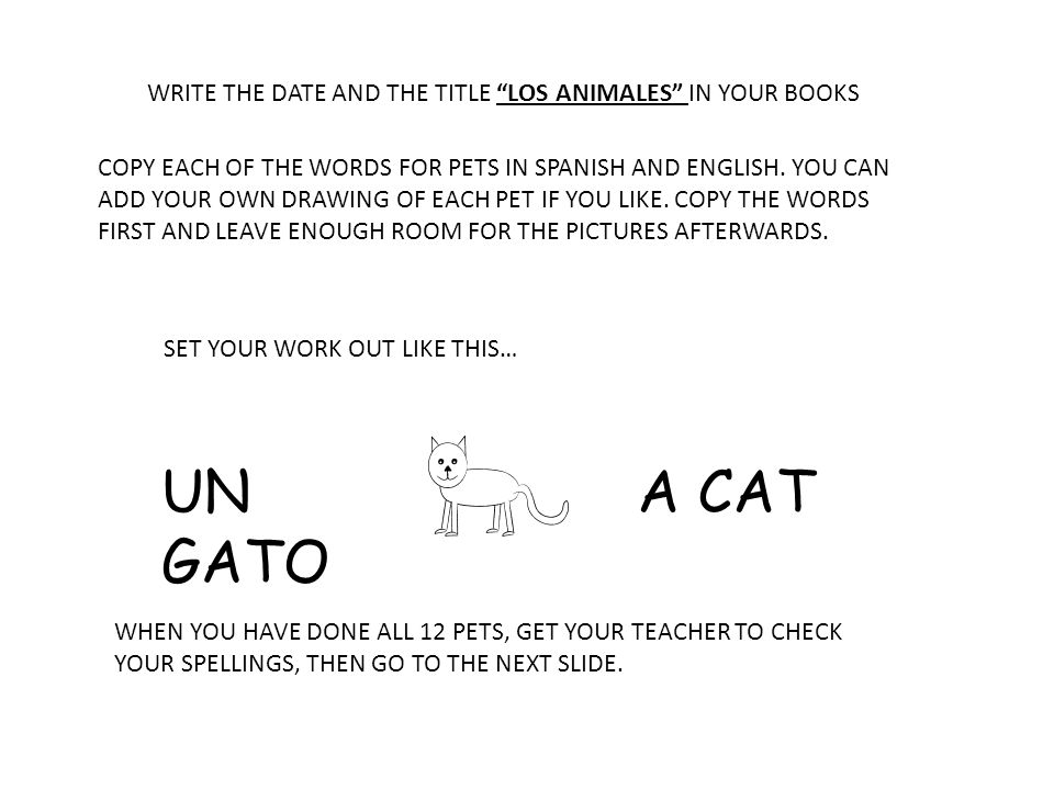 WRITE THE DATE AND THE TITLE LOS ANIMALES IN YOUR BOOKS COPY EACH OF THE WORDS FOR PETS IN SPANISH AND ENGLISH.