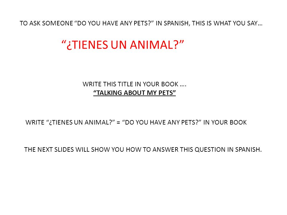 TO ASK SOMEONE DO YOU HAVE ANY PETS IN SPANISH, THIS IS WHAT YOU SAY… ¿TIENES UN ANIMAL WRITE THIS TITLE IN YOUR BOOK ….