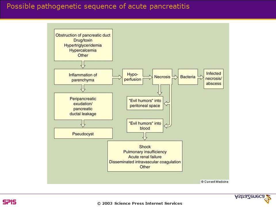 Possible pathogenetic sequence of acute pancreatitis