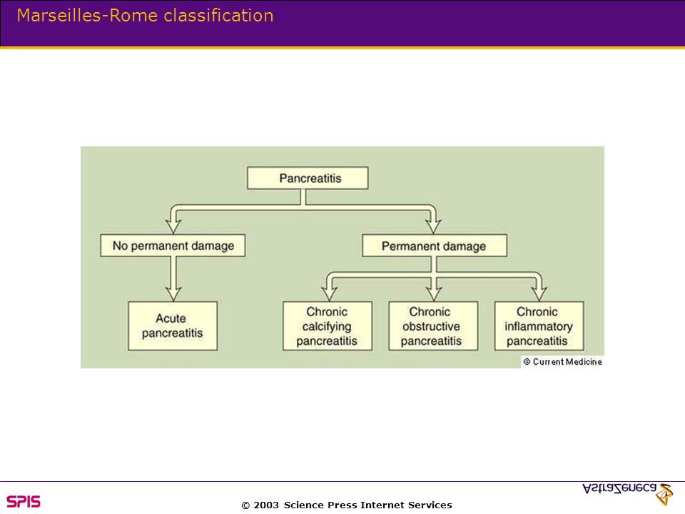 © 2003 Science Press Internet Services Marseilles-Rome classification