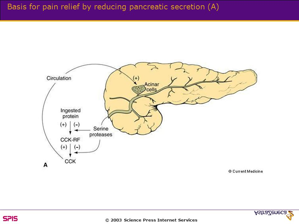 © 2003 Science Press Internet Services Basis for pain relief by reducing pancreatic secretion (A)