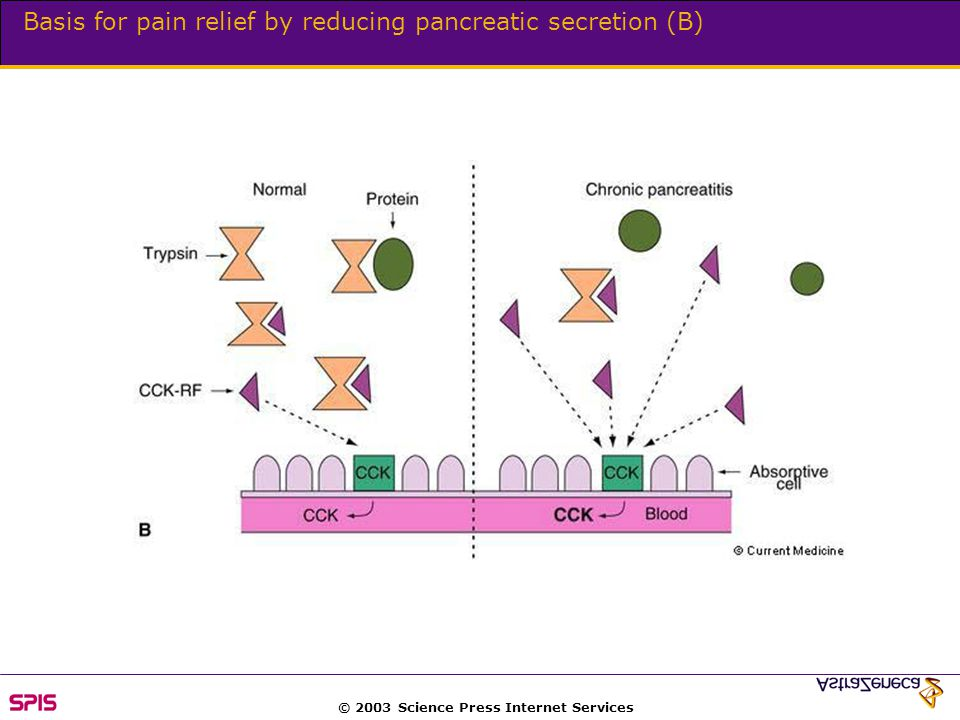 © 2003 Science Press Internet Services Basis for pain relief by reducing pancreatic secretion (B)