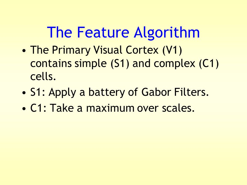 The Feature Algorithm The Primary Visual Cortex (V1) contains simple (S1) and complex (C1) cells.
