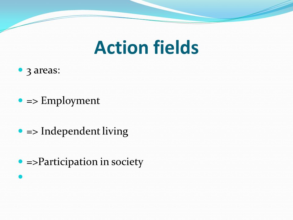 Action fields 3 areas: => Employment => Independent living =>Participation in society