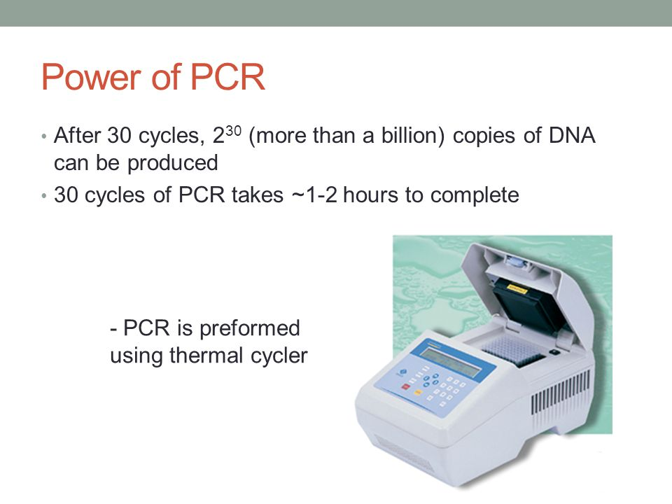 Power of PCR After 30 cycles, 2 30 (more than a billion) copies of DNA can be produced 30 cycles of PCR takes ~1-2 hours to complete - PCR is preformed using thermal cycler