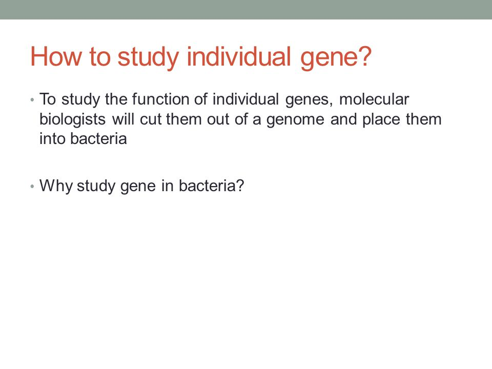 How to study individual gene.