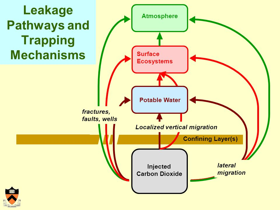 Leakage Pathways and Trapping Mechanisms Injected Carbon Dioxide Surface Ecosystems Confining Layer(s) Atmosphere lateral migration Localized vertical migration fractures, faults, wells Potable Water