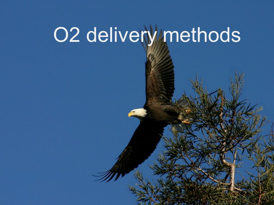 O2 delivery methods