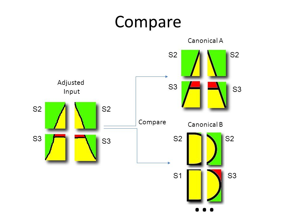 Compare Adjusted Input Canonical B Canonical A … S2 S3 S1 S2 S3