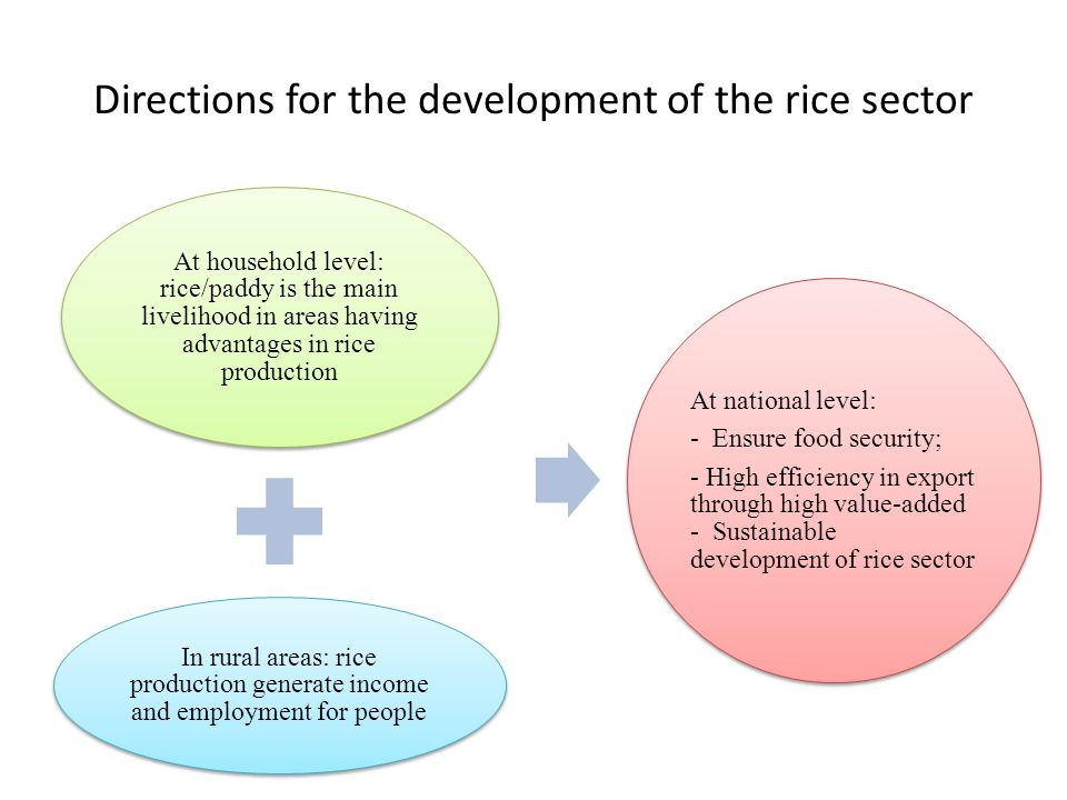 Directions for the development of the rice sector At household level: rice/paddy is the main livelihood in areas having advantages in rice production In rural areas: rice production generate income and employment for people At national level: - Ensure food security; - High efficiency in export through high value-added - Sustainable development of rice sector