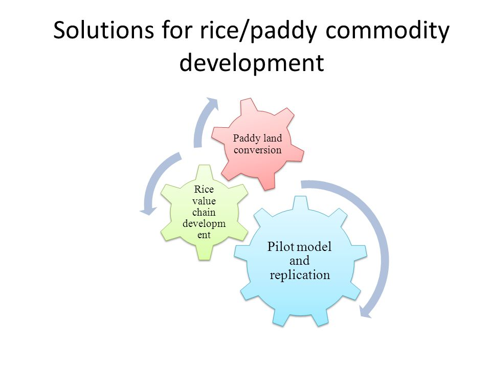 Solutions for rice/paddy commodity development Pilot model and replication Rice value chain developm ent Paddy land conversion