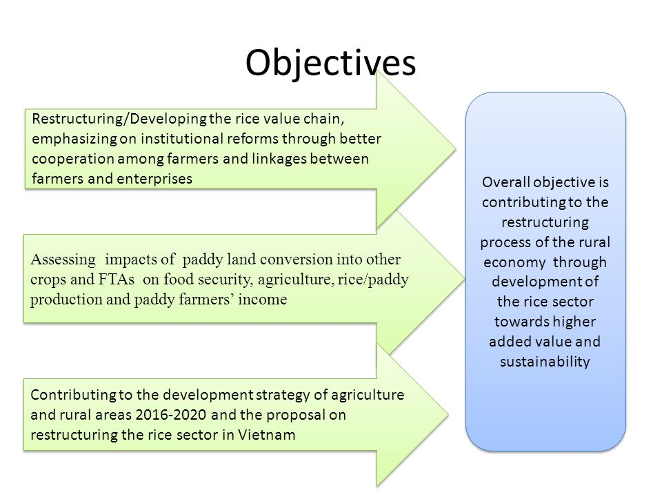 Objectives Assessing impacts of paddy land conversion into other crops and FTAs on food security, agriculture, rice/paddy production and paddy farmers' income Restructuring/Developing the rice value chain, emphasizing on institutional reforms through better cooperation among farmers and linkages between farmers and enterprises Contributing to the development strategy of agriculture and rural areas and the proposal on restructuring the rice sector in Vietnam Overall objective is contributing to the restructuring process of the rural economy through development of the rice sector towards higher added value and sustainability