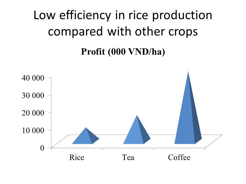 Low efficiency in rice production compared with other crops