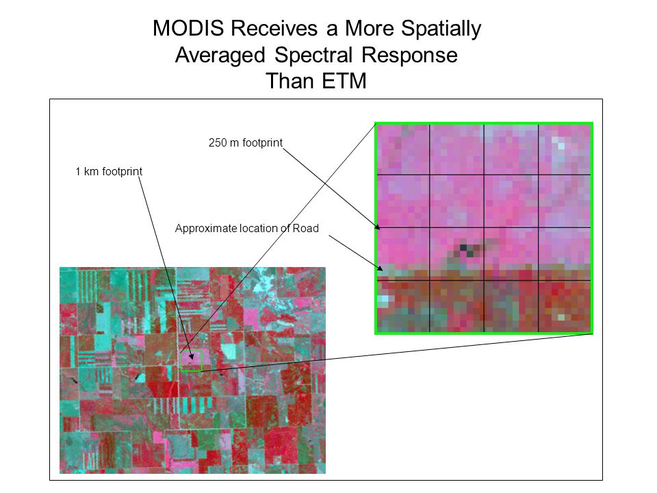 250 m footprint 1 km footprint Approximate location of Road MODIS Receives a More Spatially Averaged Spectral Response Than ETM