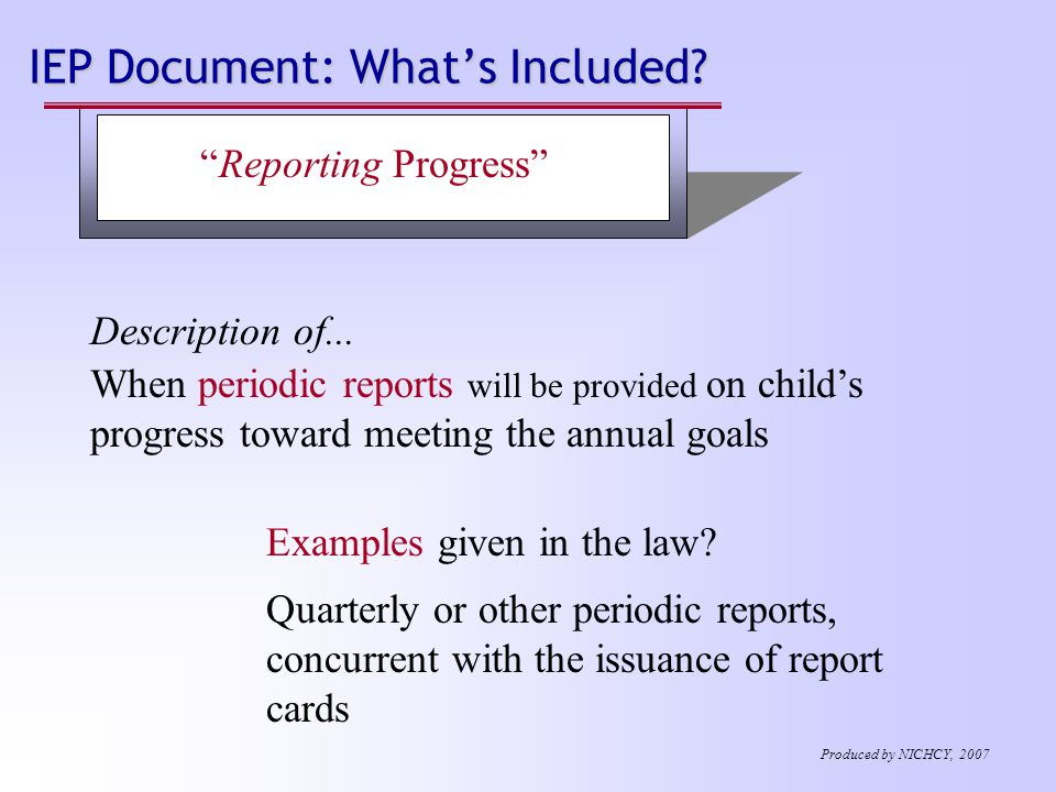 IEP Document: What's Included. Description of...