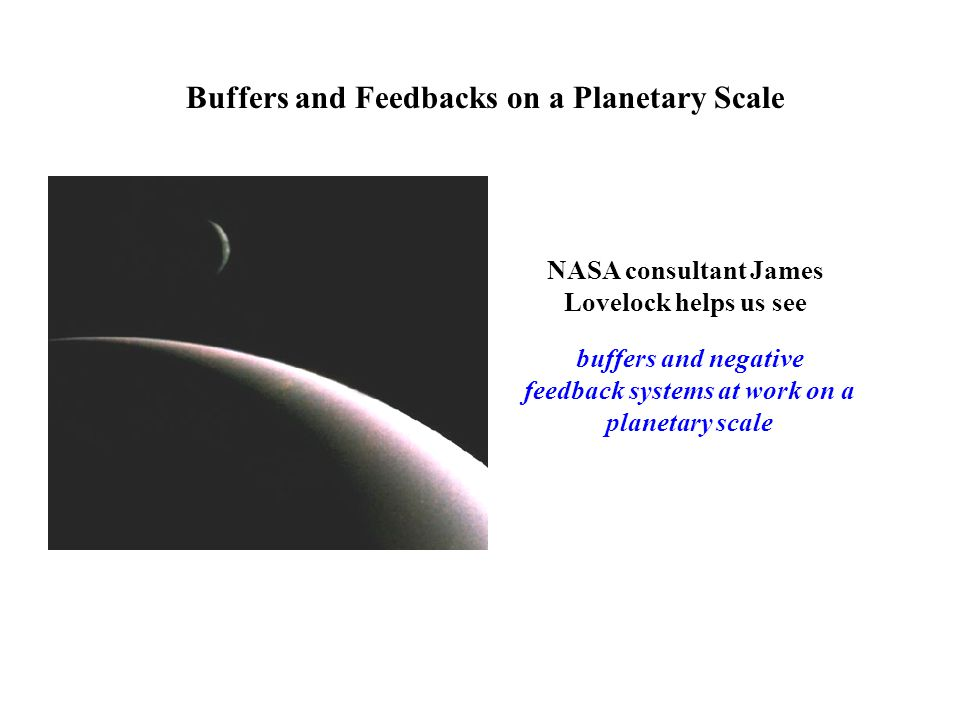 NASA consultant James Lovelock helps us see buffers and negative feedback systems at work on a planetary scale