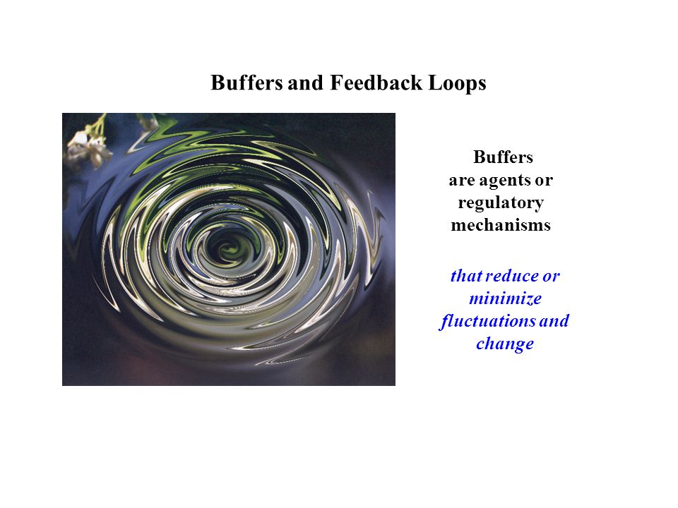 Buffers and Feedback Loops Buffers are agents or regulatory mechanisms that reduce or minimize fluctuations and change