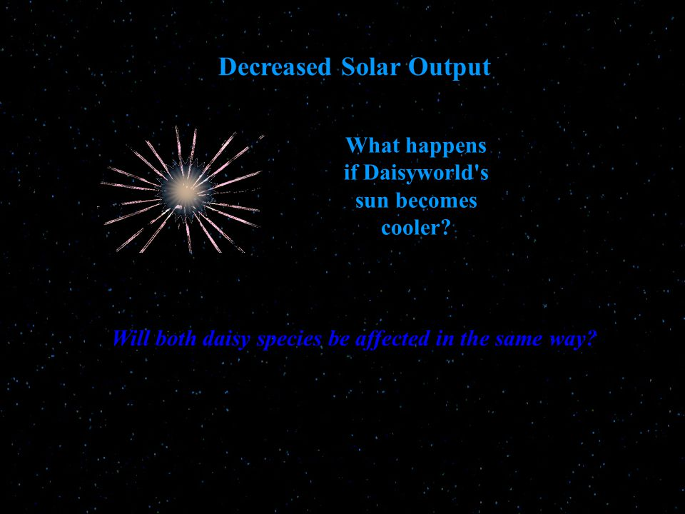 What happens if Daisyworld s sun becomes cooler.