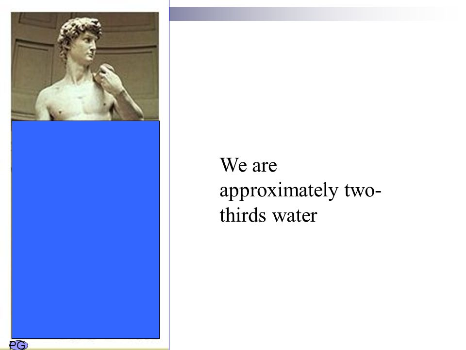 We are approximately two- thirds water PG