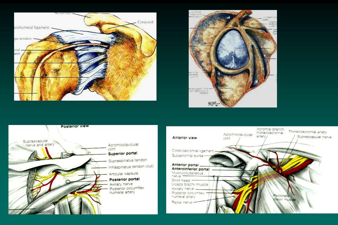 Shoulder Reconstruction - ppt download