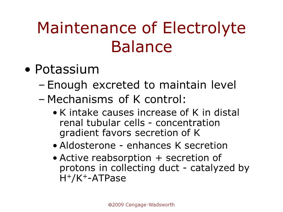  2009 Cengage-Wadsworth Maintenance of Electrolyte Balance Potassium –Enough excreted to maintain level –Mechanisms of K control: K intake causes increase of K in distal renal tubular cells - concentration gradient favors secretion of K Aldosterone - enhances K secretion Active reabsorption + secretion of protons in collecting duct - catalyzed by H + /K + -ATPase