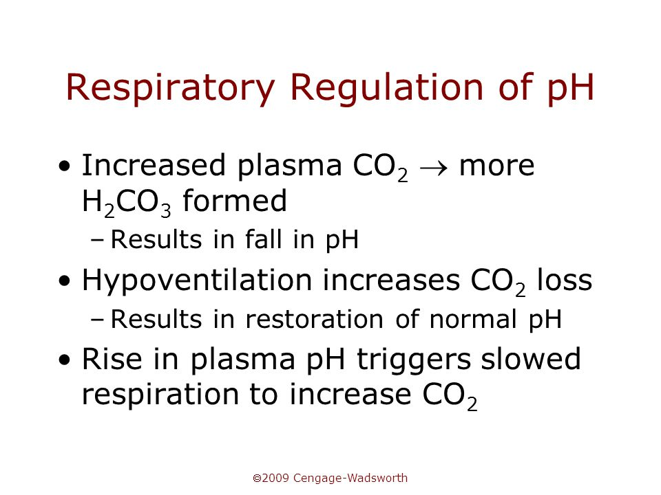  2009 Cengage-Wadsworth Respiratory Regulation of pH Increased plasma CO 2  more H 2 CO 3 formed –Results in fall in pH Hypoventilation increases CO 2 loss –Results in restoration of normal pH Rise in plasma pH triggers slowed respiration to increase CO 2