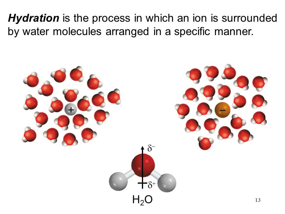 13 Hydration is the process in which an ion is surrounded by water molecules arranged in a specific manner.