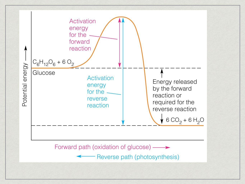 activation energy of zinc