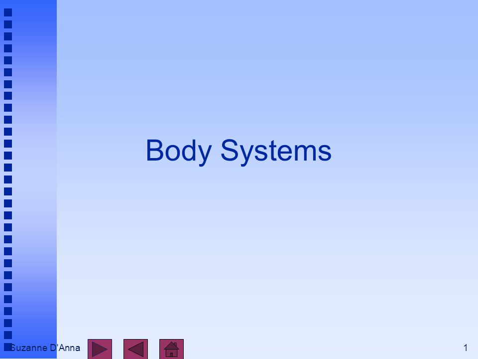 Suzanne D Anna1 Body Systems