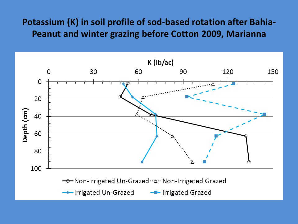 Potassium (K) in soil profile of sod-based rotation after Bahia- Peanut and winter grazing before Cotton 2009, Marianna