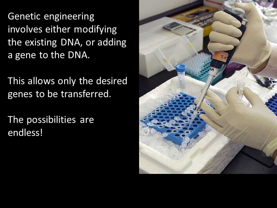 Genetic engineering involves either modifying the existing DNA, or adding a gene to the DNA.