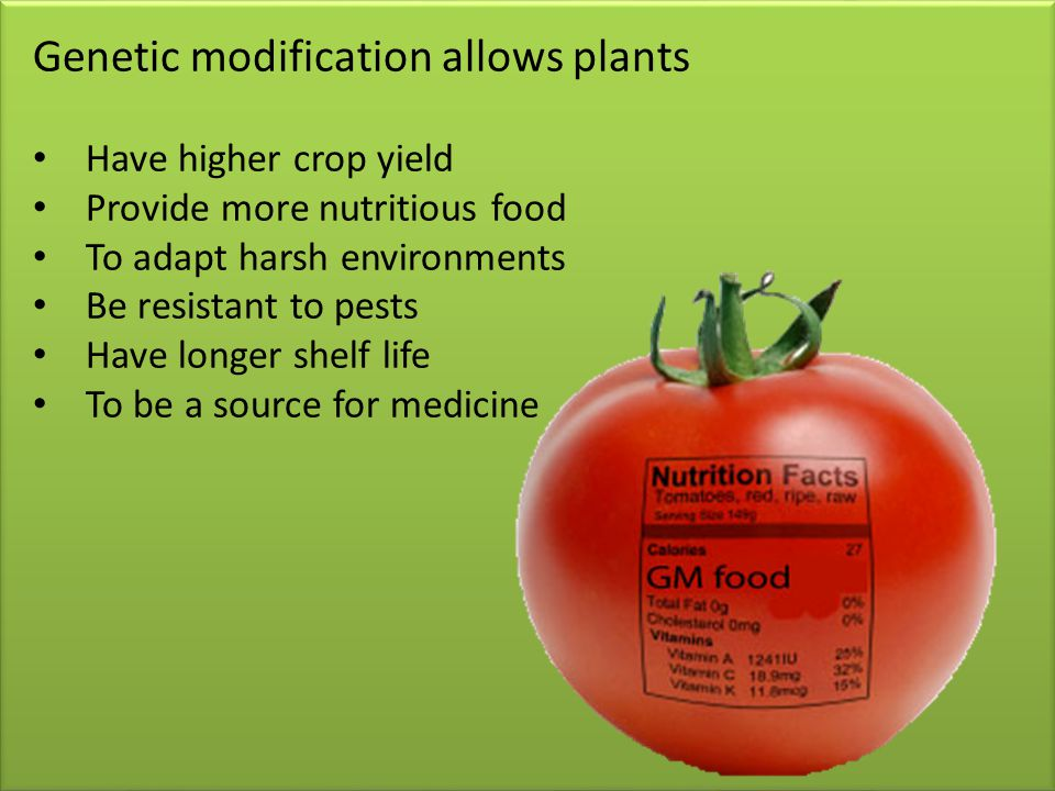 Genetic modification allows plants Have higher crop yield Provide more nutritious food To adapt harsh environments Be resistant to pests Have longer shelf life To be a source for medicine