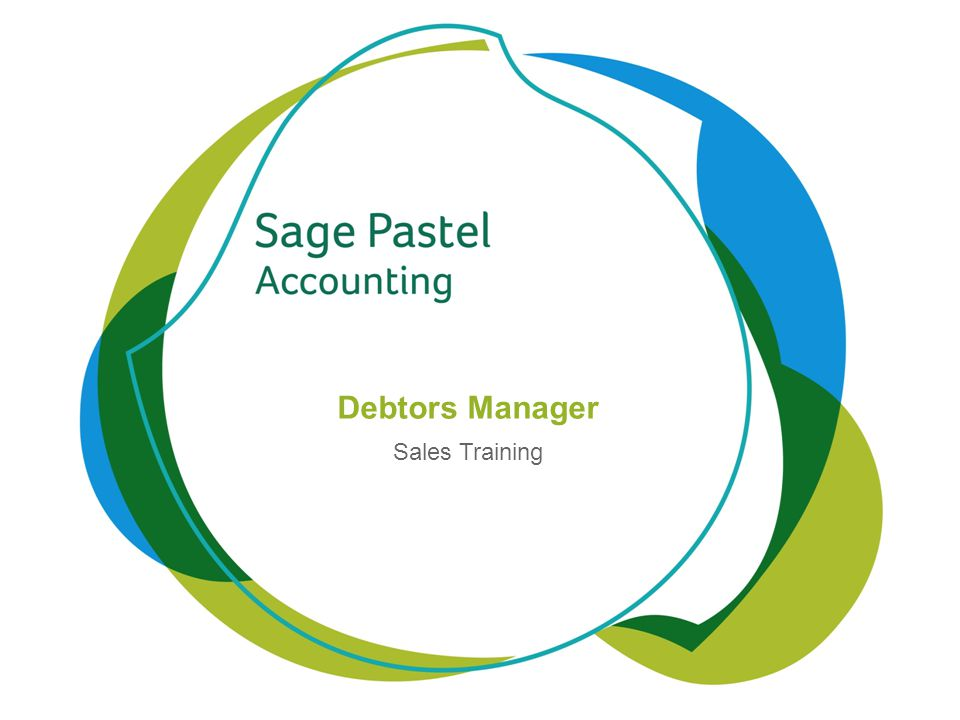Heading 1 (Arial bold - point size 22) Debtors Manager Sales Training