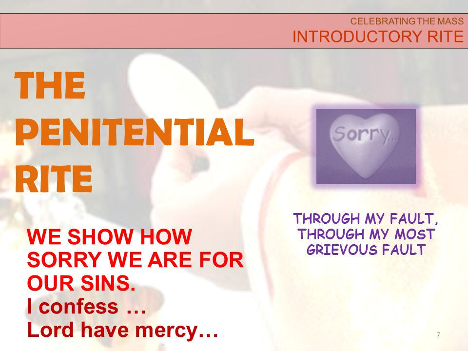 THE PENITENTIAL RITE 7 WE SHOW HOW SORRY WE ARE FOR OUR SINS.