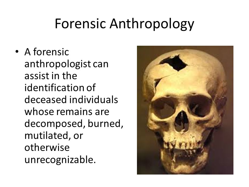 Forensic Anthropology A Forensic Anthropologist Can Assist In The Identification Of Deceased Individuals Whose Remains Are Decomposed Burned Mutilated Ppt Download