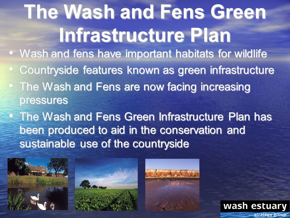 Wash and fens have important habitats for wildlife Wash and fens have important habitats for wildlife Countryside features known as green infrastructure Countryside features known as green infrastructure The Wash and Fens are now facing increasing pressures The Wash and Fens are now facing increasing pressures The Wash and Fens Green Infrastructure Plan has been produced to aid in the conservation and sustainable use of the countryside The Wash and Fens Green Infrastructure Plan has been produced to aid in the conservation and sustainable use of the countryside The Wash and Fens Green Infrastructure Plan
