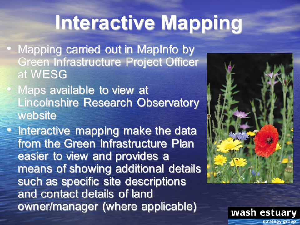 Mapping carried out in MapInfo by Green Infrastructure Project Officer at WESG Mapping carried out in MapInfo by Green Infrastructure Project Officer at WESG Maps available to view at Lincolnshire Research Observatory website Maps available to view at Lincolnshire Research Observatory website Interactive mapping make the data from the Green Infrastructure Plan easier to view and provides a means of showing additional details such as specific site descriptions and contact details of land owner/manager (where applicable) Interactive mapping make the data from the Green Infrastructure Plan easier to view and provides a means of showing additional details such as specific site descriptions and contact details of land owner/manager (where applicable) Interactive Mapping