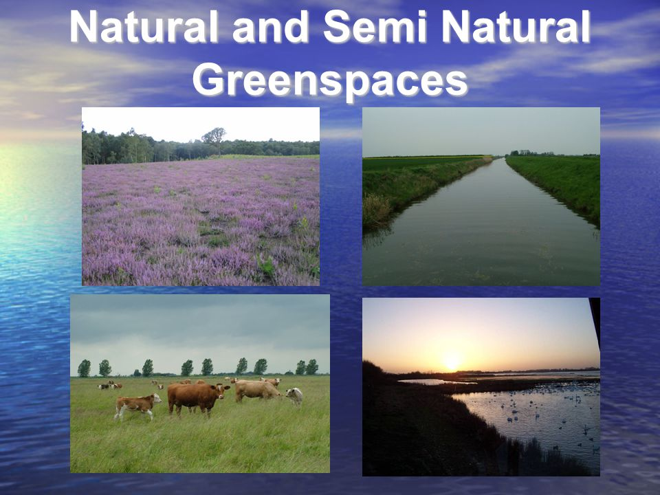 Natural and Semi Natural Greenspaces