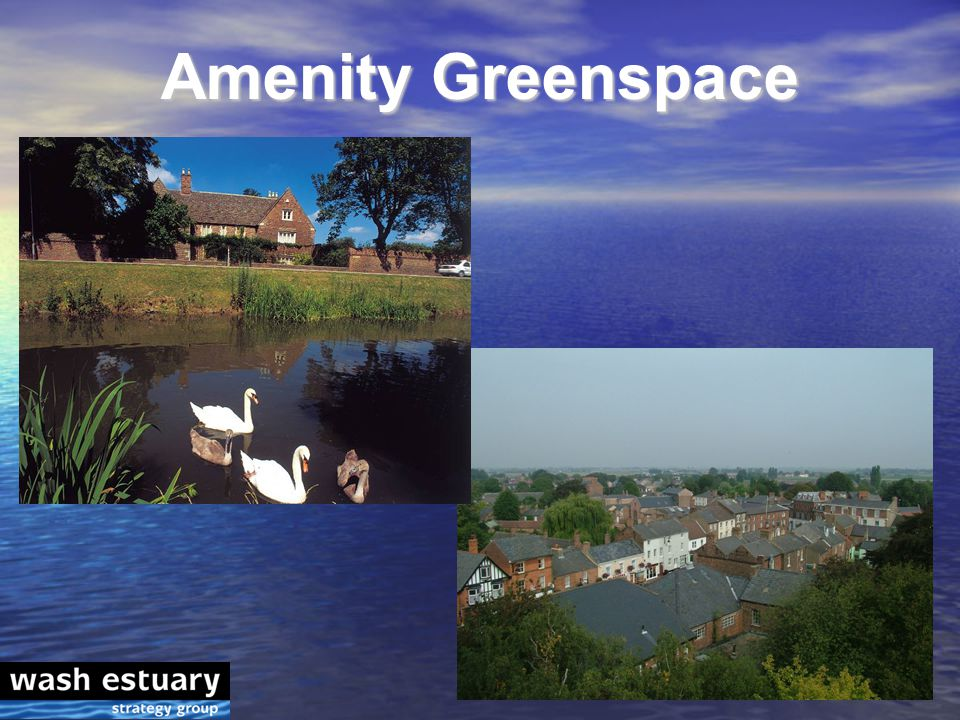 Amenity Greenspace