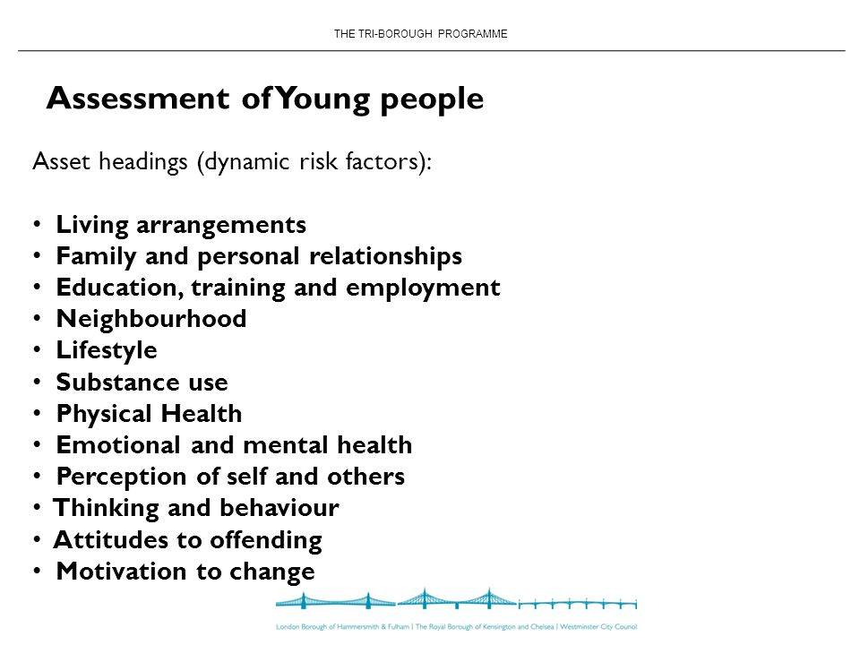 THE TRI-BOROUGH PROGRAMME Asset headings (dynamic risk factors): Living arrangements Family and personal relationships Education, training and employment Neighbourhood Lifestyle Substance use Physical Health Emotional and mental health Perception of self and others Thinking and behaviour Attitudes to offending Motivation to change Assessment of Young people