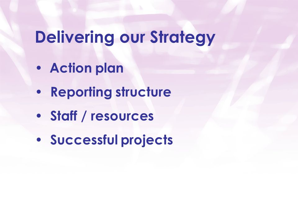 Delivering our Strategy Action plan Reporting structure Staff / resources Successful projects