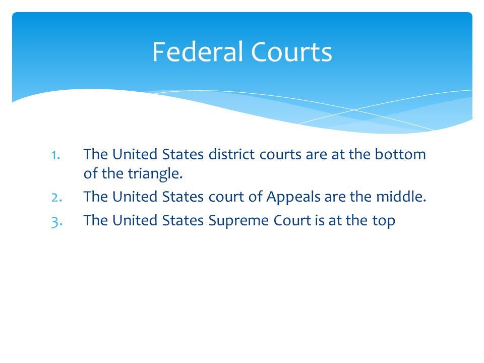 1.The United States district courts are at the bottom of the triangle.