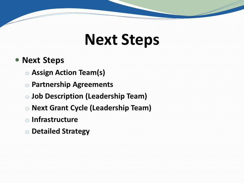 Next Steps o Assign Action Team(s) o Partnership Agreements o Job Description (Leadership Team) o Next Grant Cycle (Leadership Team) o Infrastructure o Detailed Strategy