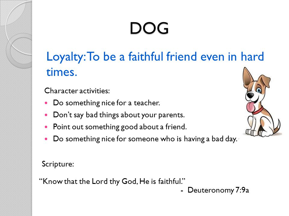 Loyalty: To be a faithful friend even in hard times.